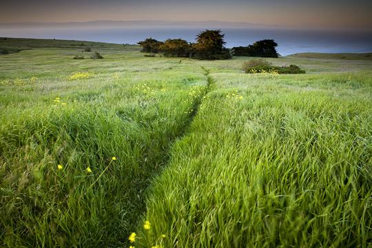 A Heavenly Stroll